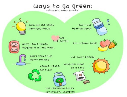 'Go Green' – Reuse Recycle Reduce.
